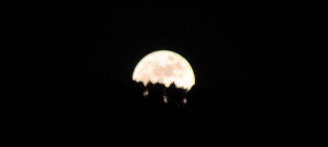 Che rumore fa la luna piena?